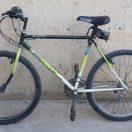 Bicicleta de muntanya ORBEA d'ocasió a cabauoportunitats.com Balaguer - Lleida - Catalunya